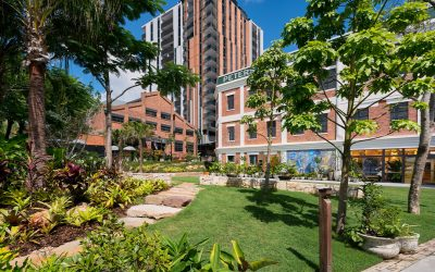 Commercial Landscape Construction of the Year 2019